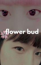 chanmi & baekhee's daily || chanbaek by cerezasamarillas