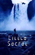 Little Secret (bxb) *Wird Überarbeitet* by FancywunderFairy