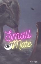Small Mate by aittes