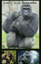 Long live Harambe《》A tribute by llMultipleFandomsll