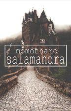 Salamandra by Momotharo