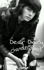 Dear Diary || Chandler Riggs by imsofredora