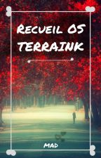 Recueil OS Terraink - MAD by MADetPAT