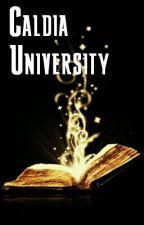 Caldia University (on hold) by vinchjan