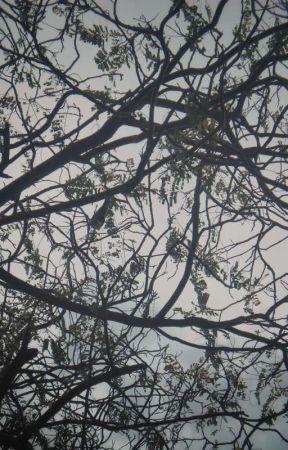 second shade by Ajay-Kumar