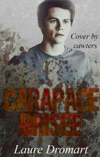Carapace Brisée [ EN CORRECTION] by LaureDromart