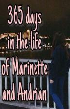 365 дней из жизни Маринетт и Андриана by pineapple_xxx