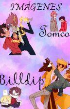 Imágenes Billdip y Tomco~ by usami-wolf