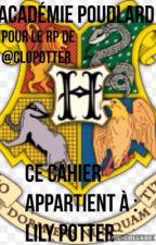 Académie de Poudlard by LilyLuna_Rogue