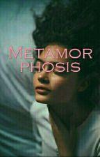 Metamorphosis (Sandro Marcos FF) by JusthinKthy9