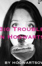 Big Trouble in Hogwarts by katjaboo