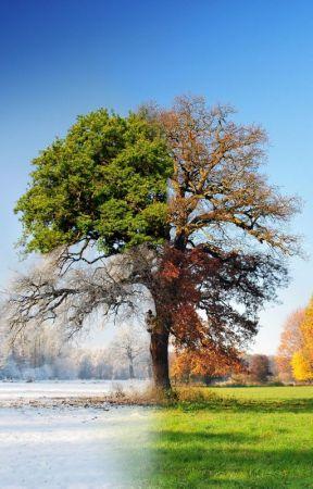 Seasons by Nekkedman
