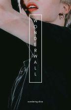 wonderwall ⚜ pjm。ksg by WanderingAlice