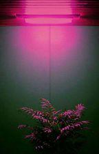 Instagram  [YoonMin]  by hurttaekook