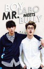 Boy Labo Meets Mr. Bully (boyxboy) by RobertAdler