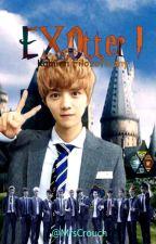 EXOtter I: Kamień Filozoficzny #hunhan #kaisoo #chanbaek | EXO Potter by MrsCrouch
