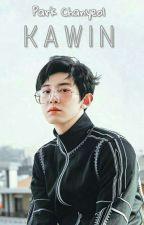 KAWIN •PCY by Fraternitexo