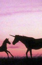 Frasi sui cavalli by uragani_di_speranza