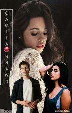 Camila e Shawn (fanfic camren) by girlfriendalaur