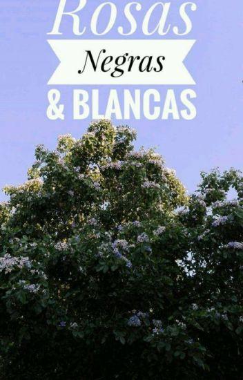 Rosas Negras Y Blancas Jandry D Garcia Wattpad