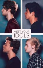 Meet your idols || 5sos by xxsassyqueenxx