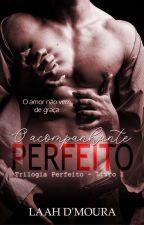 O Acompanhante Perfeito || EM BREVE by Lamourr