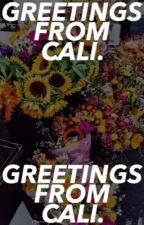 GREETINGS FROM CALIFOURNIA; ᵐᵉᵉᵗ ᵐʸ ᵒᶜˢ by dumbledorks