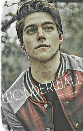 Wonderwall || MULTIFANDOM GIF IMAGINES by Zoowww