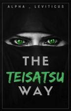 The Teisatsu Way by Alpha_Leviticus