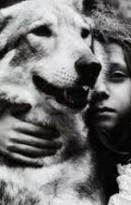 War between Werewolf's by loveless_bleeder