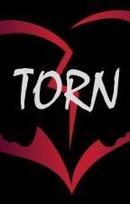 Torn by Mshoneybeee