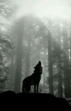 Obscure Wolf by simu46