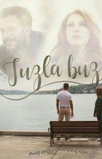 Tuzla Buz by maroonmountain