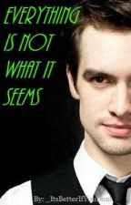 Everything Is Not What It Seems - Ryden **On Hold** by _ItsBetterIfYouDont