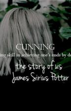the story of us. // James Sirius Potter. by theirontrial