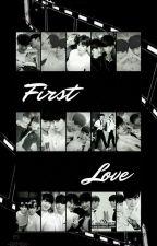 First Love |BinWoo| by -Bxmbx-