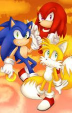 preguntas y retos al team sonic by familyportrait