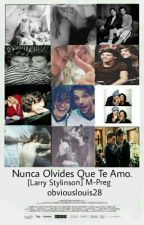 Nunca olvides que te amo -Larry Stylinson by obviouslouis28