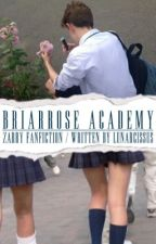 Briarrose Academy » Zarry by lunarcissus
