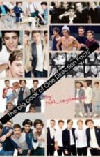 The big book of One Direction facts by real_zaynMalik