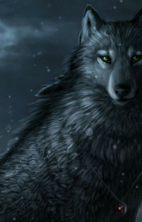 A Lone Wolf by Shadow_Queen_101