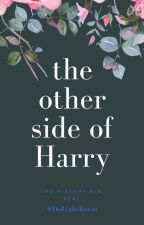 the other side of Harry {H.S} by DollynhoHoran
