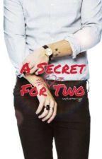 A Secret For Two [h.s] by captainharryxx