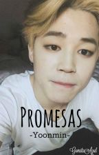 Promesas -Yoonmin- by GomitaAzul