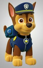 Paw Patrol Gets a New Pup by EricS8