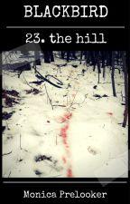 BLACKBIRD 23 - the hill by MonicaPrelooker