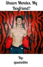 Shawn Mendes, my boyfriend? by queennbbe