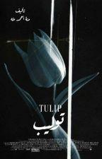 Tulip by Mickey_ahmed