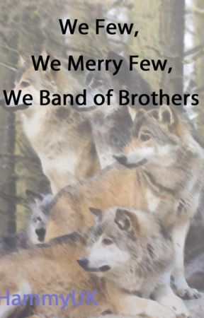 We few, we merry few, we band of brothers by HammyUK