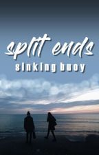 split ends by sinkingbuoy